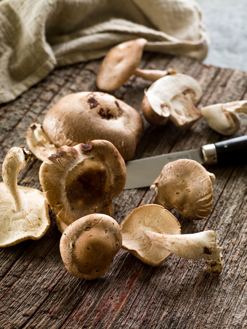 CAF_Misc_Mushrooms_032_apf.jpg